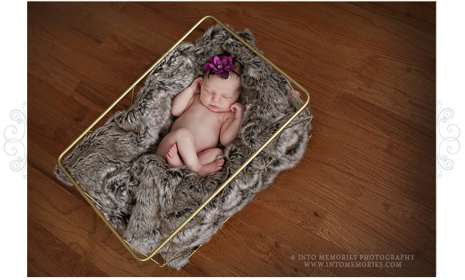 Syracuse Newborn Baby Photographer